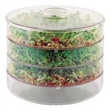 Аппарат для проращивания - проращиватель (спраутер)  семян, злаков и бобовых ProVita